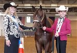 Hollowell wins horse at fair